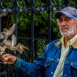 Notre Dame, sparrows, bird man, travel, street photography