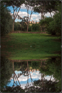 Drag the vertically flipped photo into place