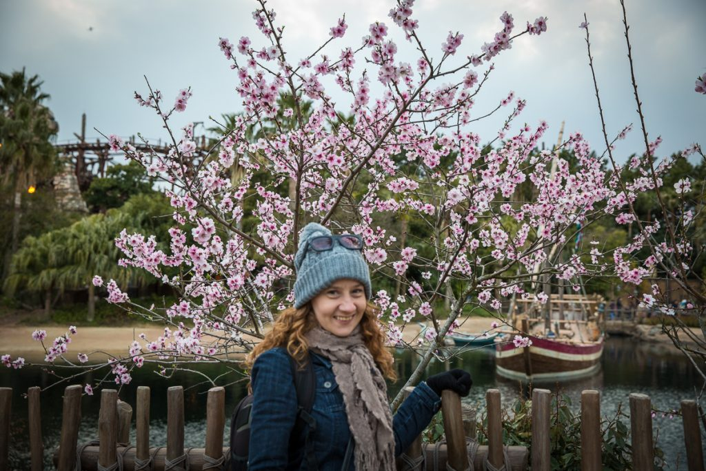 A cherry blossom sighting in Japan (my mother can't be trusted with my camera).