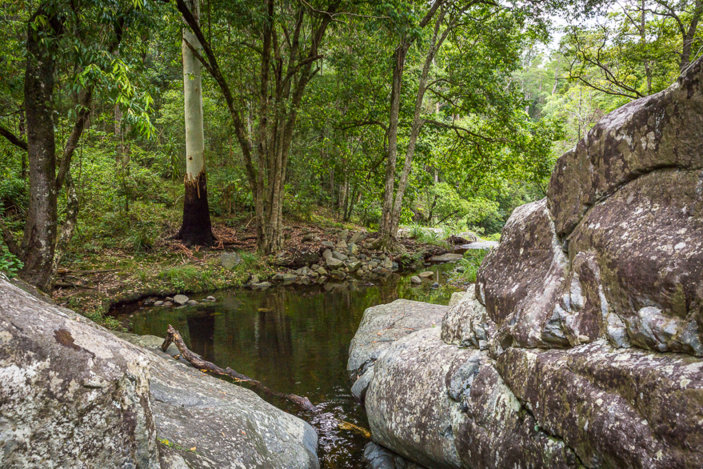 cedar creek, samford, moreton bay