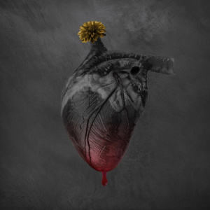 love, heart, digital manipulation, coming to life, fine art, composite, color, dark, photography, photograph, valentine, romantic, bleed, black, flower, drip, blood