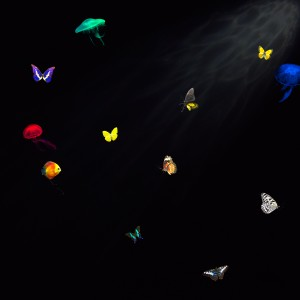 Composited fish and butterflies