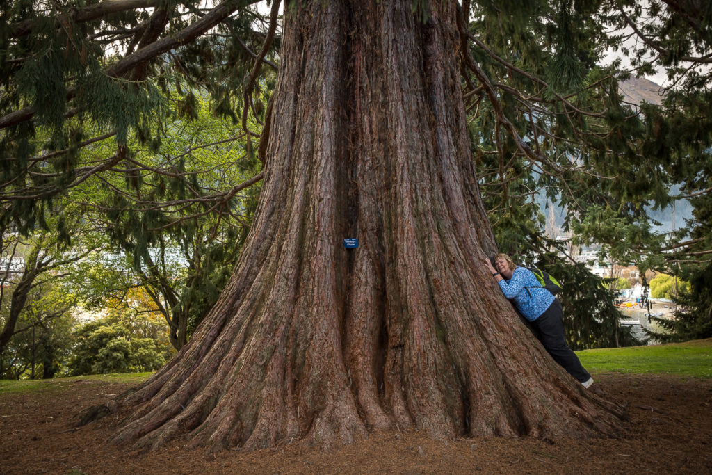 woman lies on large tree