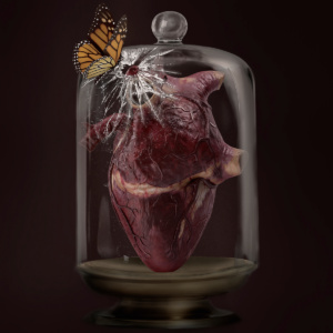 love, heart, digital manipulation, coming to life, fine art, composite, color, dark, photography, photograph, valentine, romantic, bell jar, butterfly, smash, crack, preserved, exposed, dust