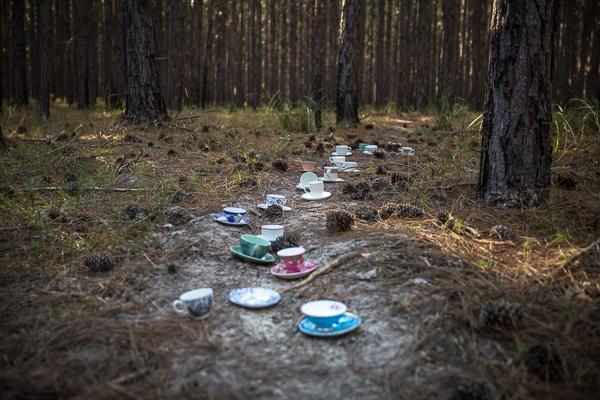 tea cups, alice in wonderland, photoshoot